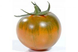 pomodori camone